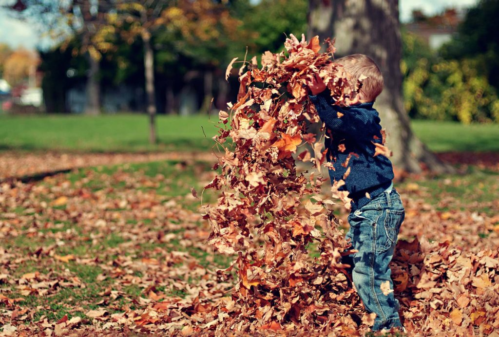Child throwing leaves